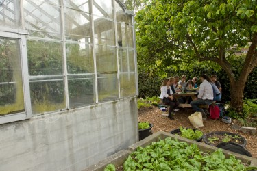 The UW Farm - Weekly Lunch Talk Session at Greenhouse