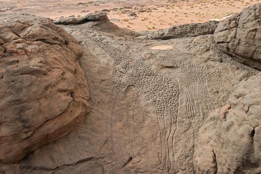 Giraffe rock carvings in the Sahara Desert (photo: Matthew Paulson)