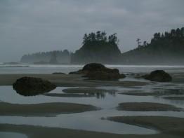 Olympic Coast in Washington