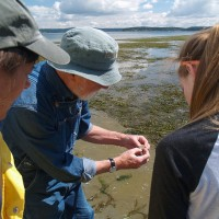 Students and instructors check out a marine worm that lives along Griffin Bay's sandy shores.
