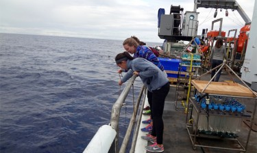 Students onboard the R/V Thompson collect velella velella (by-the-wind-sailors) off the starboard side during the first leg of the expedition.