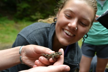 Student and frog