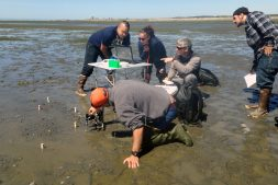 Project collaborator Marco Hatch (center, pointing) works with native students to instrument mudflats of Puget Sound for environmental data collection.