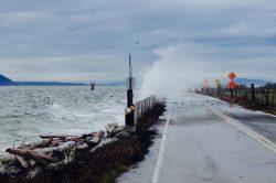 Vagues de tempête de l'île Lummi