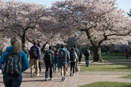 Students walking through the Quad.
