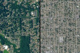 An aerial view showing the differences in tree cover in two neighboring cities.