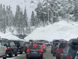 parked cars on a snowy highway