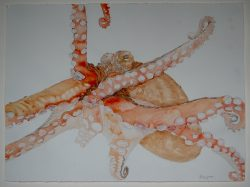 painting of octopus